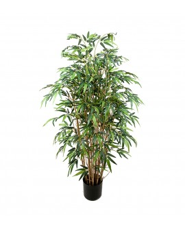 Bambus 120cm