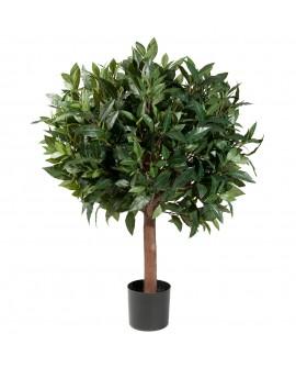Loorberipuu 80cm