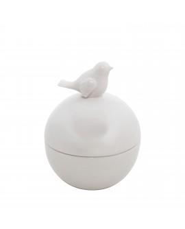 Linnukesega kausike valge